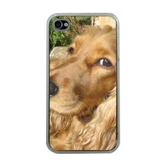Red Cocker Spaniel Red Apple iPhone 4 Case (Clear)