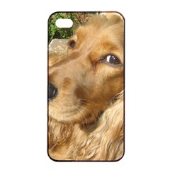 Red Cocker Spaniel Red Apple iPhone 4/4s Seamless Case (Black)