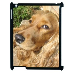 Red Cocker Spaniel Red Apple iPad 2 Case (Black)