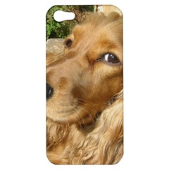 Red Cocker Spaniel Red Apple iPhone 5 Hardshell Case