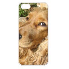 Red Cocker Spaniel Red Apple iPhone 5 Seamless Case (White)