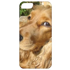Red Cocker Spaniel Red Apple iPhone 5 Classic Hardshell Case