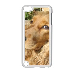 Red Cocker Spaniel Red Apple iPod Touch 5 Case (White)