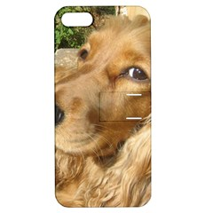 Red Cocker Spaniel Red Apple iPhone 5 Hardshell Case with Stand
