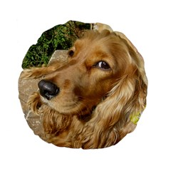 Red Cocker Spaniel Red Standard 15  Premium Flano Round Cushions