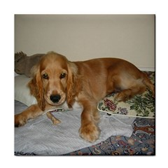 Red Cocker Spaniel Puppy Tile Coasters