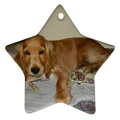 Red Cocker Spaniel Puppy Ornament (Star)