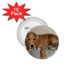 Red Cocker Spaniel Puppy 1.75  Buttons (10 pack)