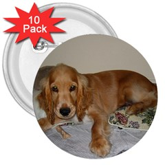 Red Cocker Spaniel Puppy 3  Buttons (10 pack)