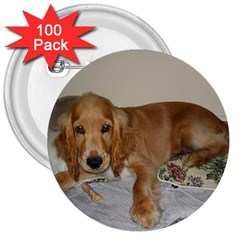 Red Cocker Spaniel Puppy 3  Buttons (100 pack)