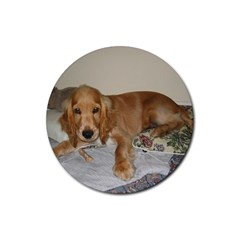 Red Cocker Spaniel Puppy Rubber Round Coaster (4 pack)