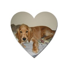 Red Cocker Spaniel Puppy Heart Magnet