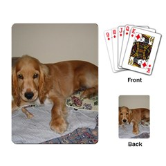 Red Cocker Spaniel Puppy Playing Card