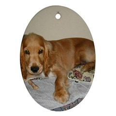 Red Cocker Spaniel Puppy Oval Ornament (Two Sides)