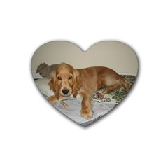 Red Cocker Spaniel Puppy Heart Coaster (4 pack)