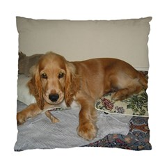 Red Cocker Spaniel Puppy Standard Cushion Case (Two Sides)