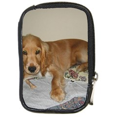 Red Cocker Spaniel Puppy Compact Camera Cases
