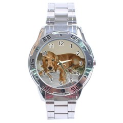 Red Cocker Spaniel Puppy Stainless Steel Analogue Watch