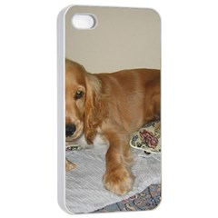 Red Cocker Spaniel Puppy Apple iPhone 4/4s Seamless Case (White)