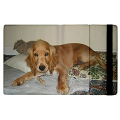 Red Cocker Spaniel Puppy Apple iPad 3/4 Flip Case
