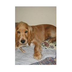 Red Cocker Spaniel Puppy Small Tapestry