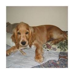 Red Cocker Spaniel Puppy Square Tapestry (Large)