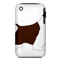 English Springer Spaniel Silo Color iPhone 3S/3GS