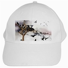 Birds Crows Black Ravens Wing White Cap