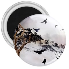 Birds Crows Black Ravens Wing 3  Magnets