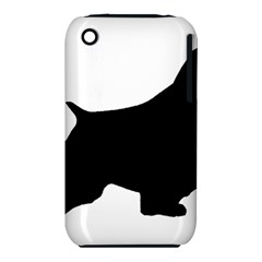 English Springer Spaniel Silo Black iPhone 3S/3GS