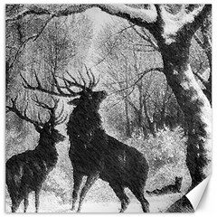 Stag Deer Forest Winter Christmas Canvas 16  X 16