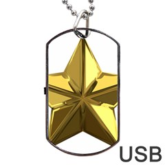 Stars Gold Color Transparency Dog Tag USB Flash (One Side)