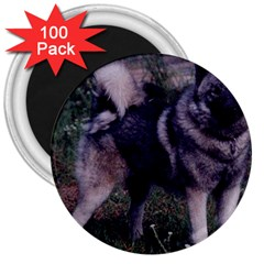 Norwegian Elkhound Full 3 3  Magnets (100 pack)
