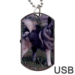 Norwegian Elkhound Full 3 Dog Tag USB Flash (Two Sides)