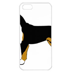 Entlebucher Mt Dog Silo Color Apple iPhone 5 Seamless Case (White)