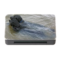 2 Flat Coated Retrievers Swimming Memory Card Reader with CF