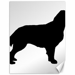Flat Coated Retriever Silo Canvas 12  x 16