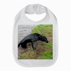 Flat Coated Retriever Wet Amazon Fire Phone
