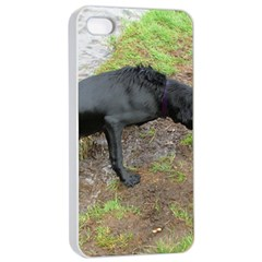 Flat Coated Retriever Wet Apple iPhone 4/4s Seamless Case (White)
