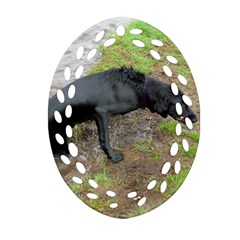 Flat Coated Retriever Wet Oval Filigree Ornament (Two Sides)
