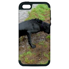 Flat Coated Retriever Wet Apple iPhone 5 Hardshell Case (PC+Silicone)