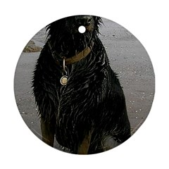 Flat Coated Retriever Muddy Wet Round Ornament (Two Sides)