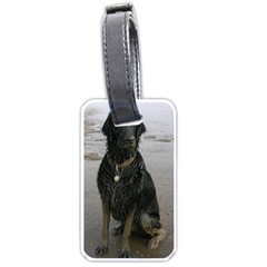 Flat Coated Retriever Muddy Wet Luggage Tags (Two Sides)