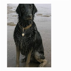 Flat Coated Retriever Muddy Wet Small Garden Flag (Two Sides)