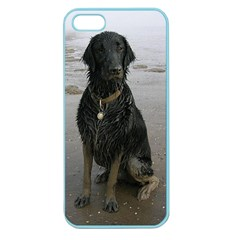 Flat Coated Retriever Muddy Wet Apple Seamless iPhone 5 Case (Color)