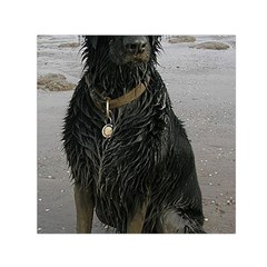 Flat Coated Retriever Muddy Wet Small Satin Scarf (Square)