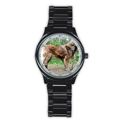 Leonberger Full Stainless Steel Round Watch
