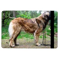 Leonberger Full iPad Air 2 Flip