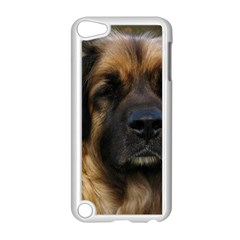 Leonberger 2 Apple iPod Touch 5 Case (White)