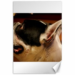 French Bulldog black white Canvas 24  x 36